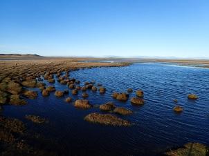 Paysage de steppe envahie par l'eau.