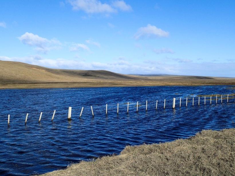 Après de fortes pluies de petits plans d'eau se forment au milieu de la steppe.