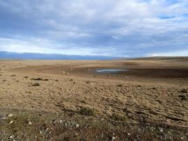 Traversée compliquée d'une zone particulièrement désertique, au cours de laquelle j'ai manqué d'eau.