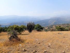Environnement très sec du chemin de la Dehesa