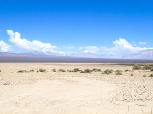 Vue sur la Cordillère, surplombée à cet endroit de certains de ses plus hauts sommets, comme le Mercedario (6 720 m), depuis la Pampa du Leoncito