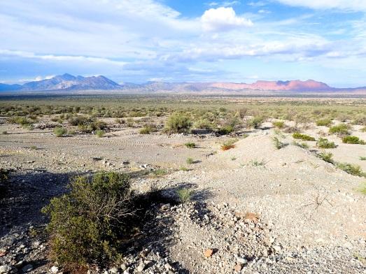 Les couleurs du désert en fin de journée