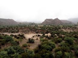Vue sur la réserve naturelle La Cienaga, véritable sanctuaire pour de nombreuses espèces d'oiseaux