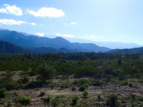 Cette région se révèle plus boisée que ce que j'avais jusqu'ici l'occasion de voir