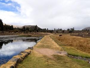 Chemin du Qhapaq Nan qui traverse le site archeologique de Raqchi