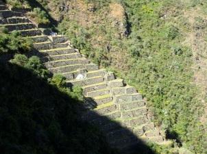 Vue d'ensemble sur les terrasses des Lamas du Soleil