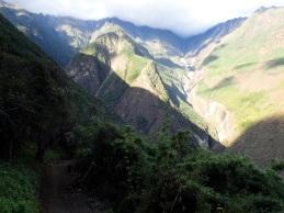 Deuxième partie de la descente vers le Rio Blanco, au sein dúne forêt toujours aussi exceptionnelle