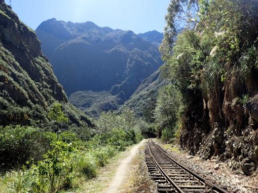 La voie ferrée traverse une zone magnifique de forêt tropicale