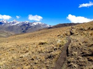 Chemin de montagne relativement plat sur la section reliant les deux cols