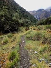 Ascension progressive dans un premier temps vers le col Yanacon